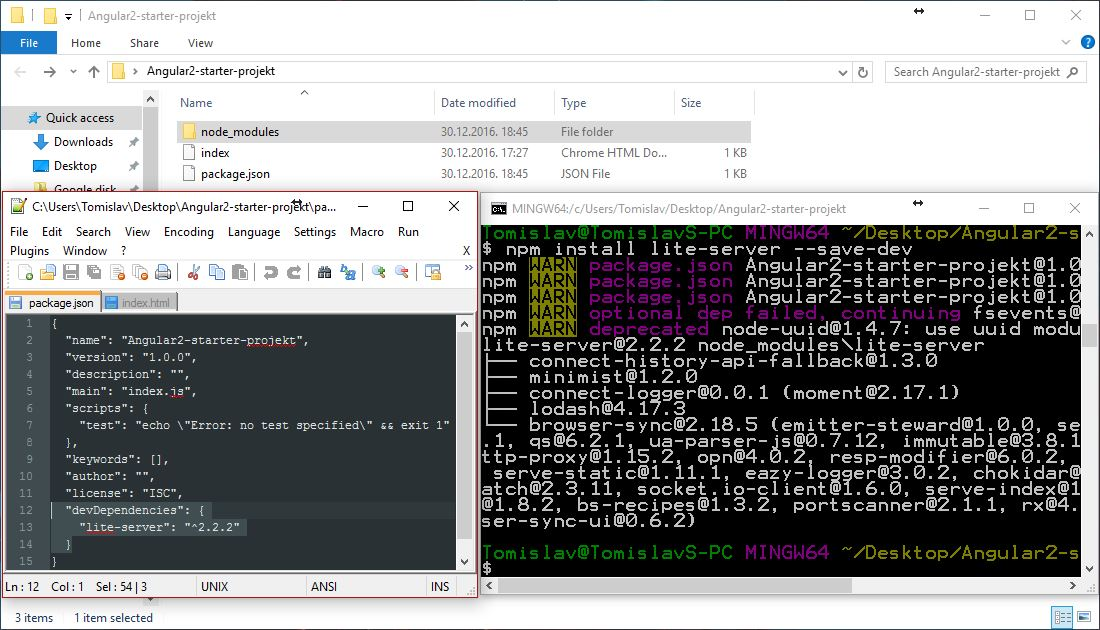 NPM lite-server