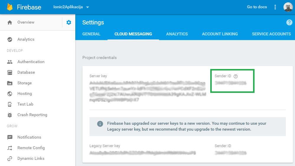 Google Firebase SenderID