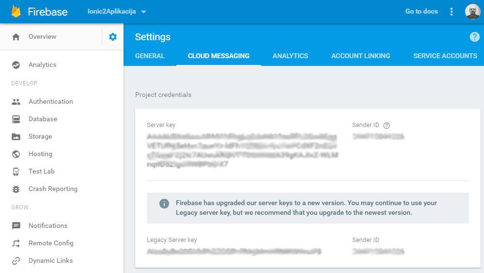 Google Firebase Server Key