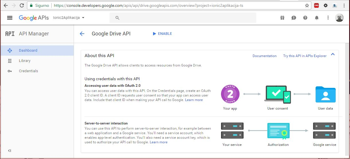 Google Developers API Enable