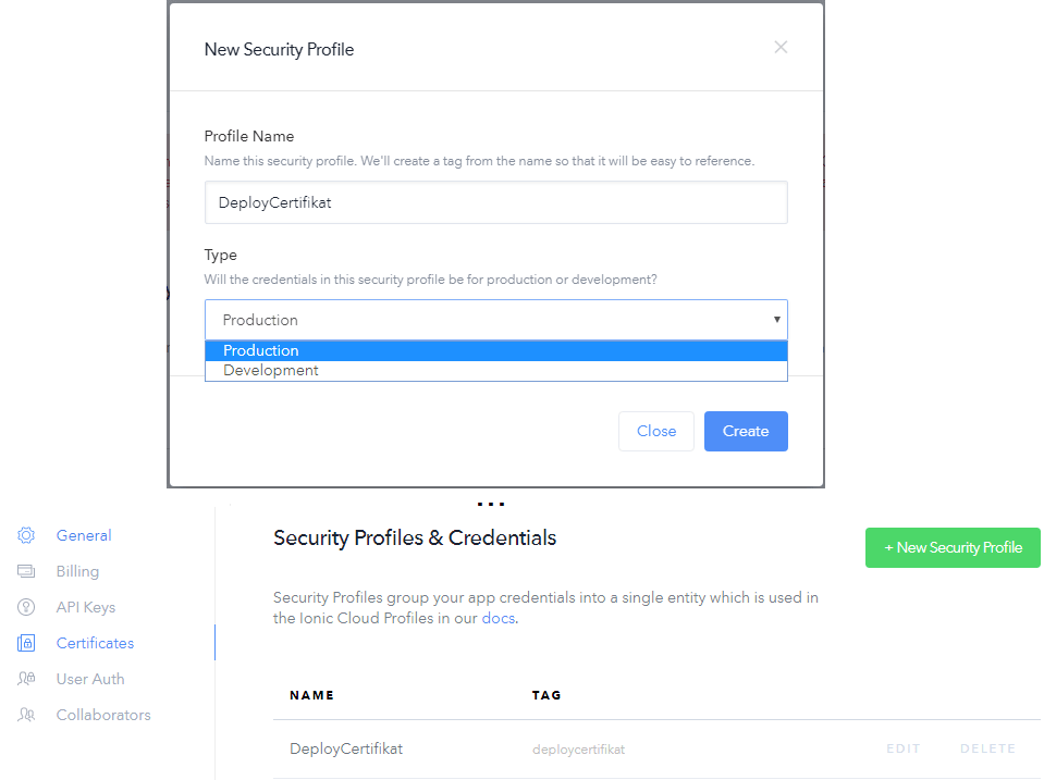 Ionic Security Profile